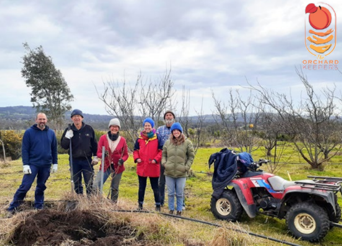 Orchard Keepers Harcourt